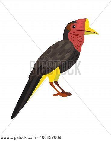 Bird With Big Beak. Cartoon Exotic Animal Of Sky, Bright Character Of Ornithology, Vector Illustrati