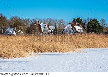 Reeds And Buildings On The Bodden Coast In Born, Germany.