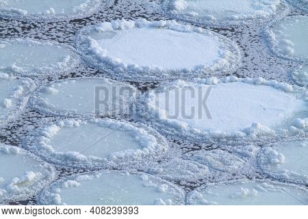 A Severe Frost Froze The Rolled Round Ice Floes On The River Into A General Ice Sheet. The Pure Blac