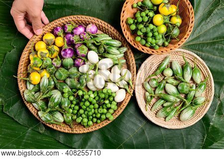 Various Fresh Organic Asian Eggplant Or Aubergine From Local Farmer Market, Northern Thailand