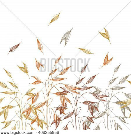 Vector Horizontal Seamless Pattern With Spikelets Of Oats. Hand Drawn Illustration. Sketch. Elements