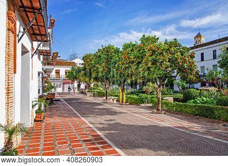 View Of Beautiful Orange Trees In Marbella, Blue Sky In The Background. Orange Trees In The City. Pl