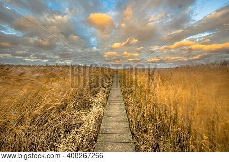 Wooden Walkway Through Salt Tidal Marsh In Natura 2000 Area Dollard, Groningen Province, The Netherl