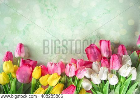 Spring Tulip Flowers Background