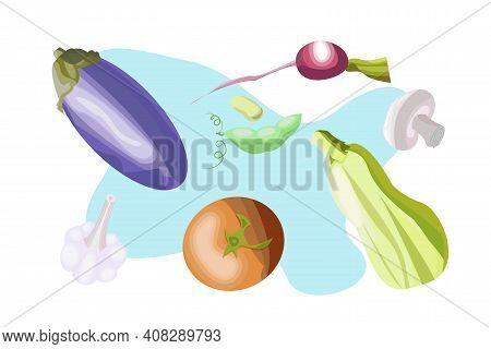 Set Of Vegetables For Stews Isolated On White Background. Eggplant, Radish, Champignon, Zucchini, Re