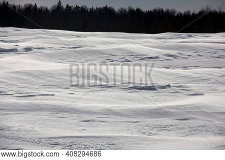 Sunny Blizzardly Winter Day. In The Field Strong Wind Formed Snow Barkhans. In The Distance The Blac