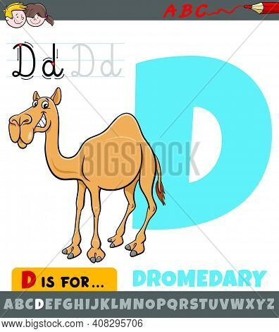Educational Cartoon Illustration Of Letter D From Alphabet With Dromedary Animal Character For Child
