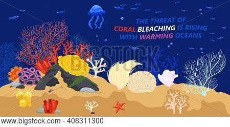 Marine Life Problems. Coral Reef Dying. Underwater World Ecological Crisis. Corals Bleaching. Ocean