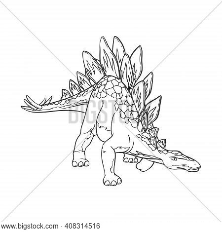 Stegosaurus Dinosaur Cartoon Linear Sketch For Coloring Book Isolated On White Background. Vector Il