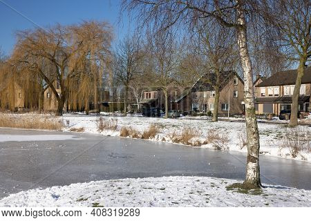 Snowy Winter Landscape With Weeping-willow And Birch Near Canal In Residential Area Of Urk, The Neth