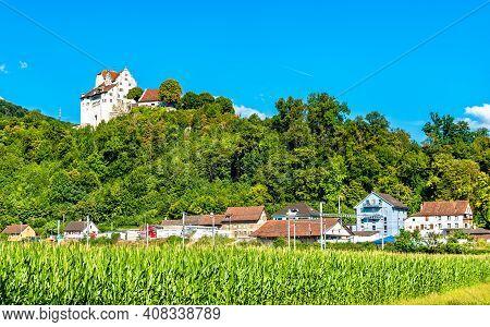 View Of Wildegg Castle Above A Cornfield. Aargau, Switzerland