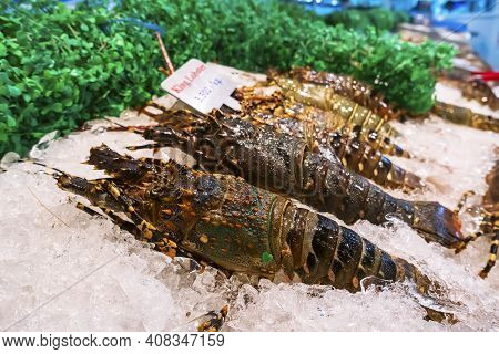 Fresh Lobsters On Ice For Sale At Restaurant. Selective Focus On The Dark Lobster.