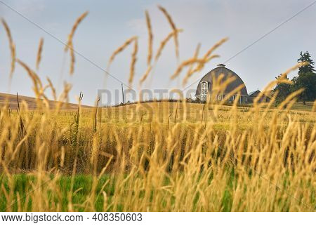 Rustic Round Barn In The Palouse. A Round Barn In Washington State, Usa.