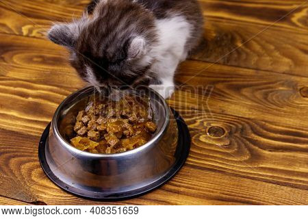 Small Kitten Eating His Food From Metal Bowl On Wooden Floor