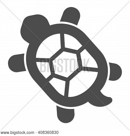 Turtle With Hard Shell Solid Icon, Domestic Animals Concept, Tortoise Sign On White Background, Turt