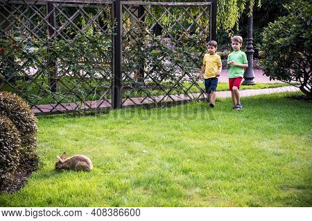 Two Sweet Little Boy And Pennon Rabbit Bunnies Are Sitting On Green Grass. Friendship Between Humans