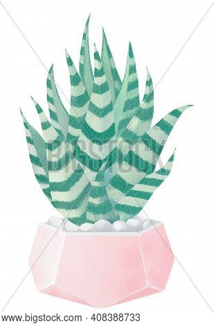 Watercolor Painted Cactus. Floral Illustration. Botany. Watercolor Cactus In A Pot. Potted Cactus Il
