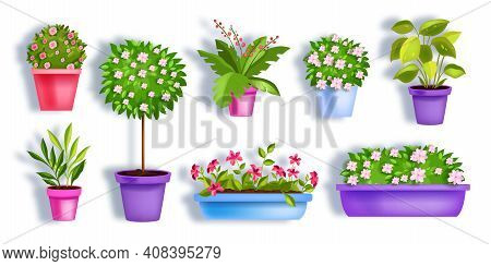 Flower Pots Vector Garden Spring Set With Blooming House Plants, Blossom Tree, Green Leaves, Seedlin