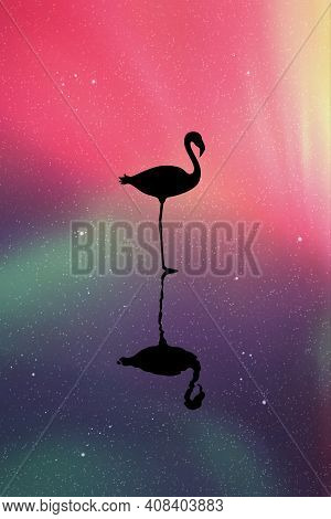 Flamingo Silhouette At Night. Bird Reflected In Water. Aurora Borealis