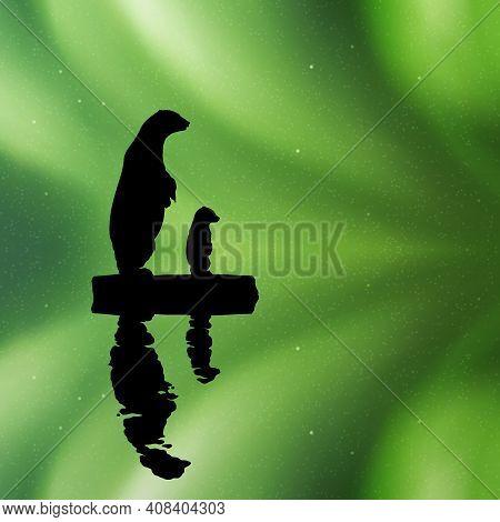 Polar Bears On Ice Floe At Night. Animal Silhouettes. Aurora Borealis