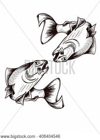 Fishing. Hand Drawn Vector Fish. Sketch Fish.