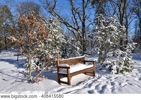 Snow Covered Wooden Bench In A Beautiful Winterland