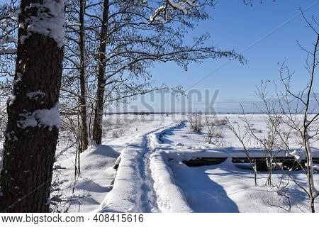 Footpath Into A Snowy Landscape On The Swedish Island Oland