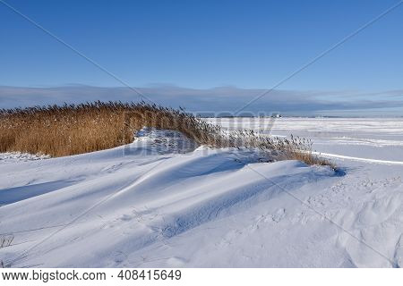 Snowdrift And Reeds By The Coast Of The Island Oland In Sweden