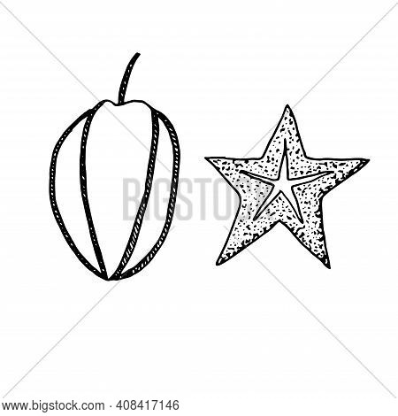 Set Of Carambola Vector Illustration Hand Drawn Sketch