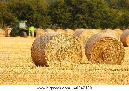 Circular Straw Bales
