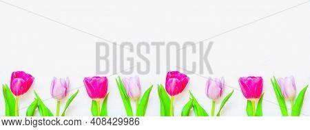 Spring flower background. Lovely spring tulip flowers on wooden background, spring flowers holiday postcard. Spring flower background with colorful spring tulip flowers, spring flower background, spring tulip flowers