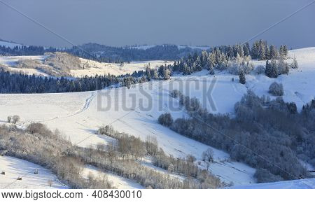 nice winter landscape in Carpathian mountains