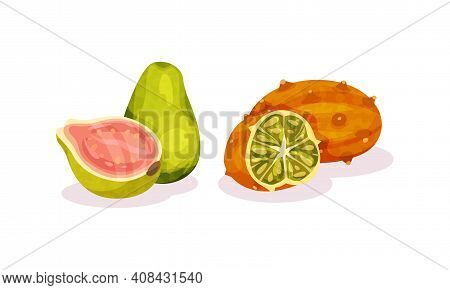 Ripe Exotic Fruits With Kiwano And Pomelo Vector Set