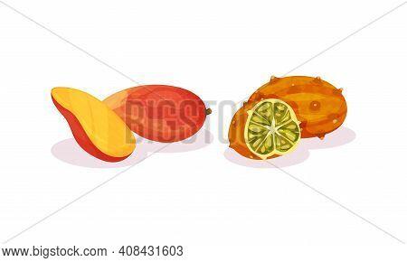 Ripe Exotic Fruits With Kiwano And Mango Vector Set