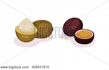 Ripe Exotic Fruits With Passion Fruit And Longan Vector Set
