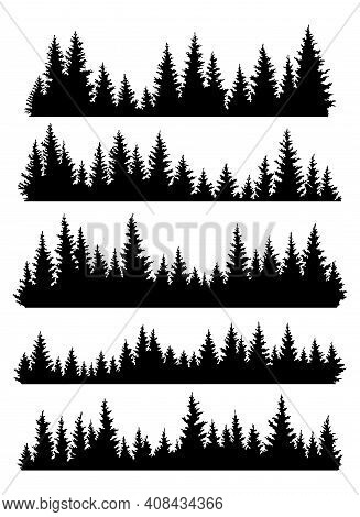 Set Of Fir Trees Silhouettes. Coniferous Spruce Horizontal Background Patterns, Black Evergreen Wood