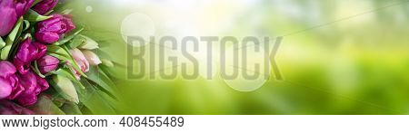 Purple Tulips On Blurred Green Spring Background. Abstract Landscape With Shining Bokeh And Bouquet.