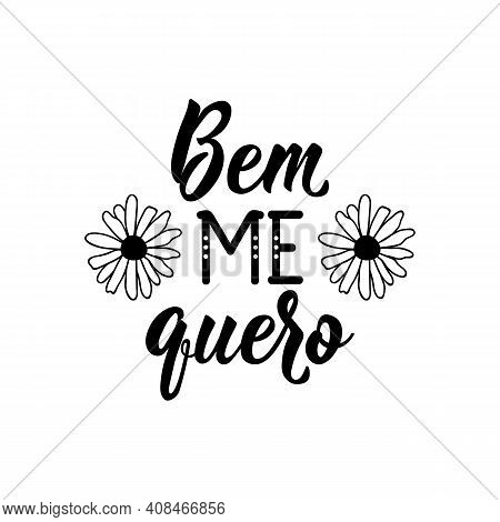 Brazilian Lettering. Translation From Portuguese - Well I Want Me. Modern Vector Brush Calligraphy.