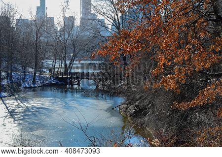 Lake in New York in central Park