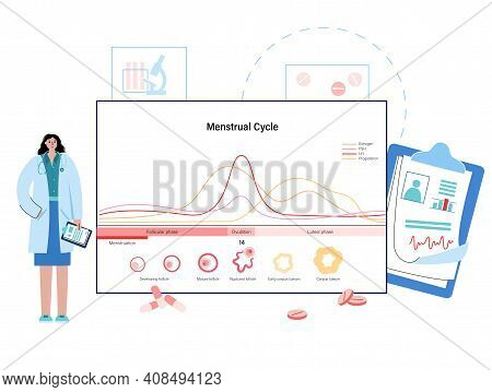 Menstrual Cycle Diagram. Woman Health Concept. Menstruation Phases. Ovum Development. Doctor In Lab.