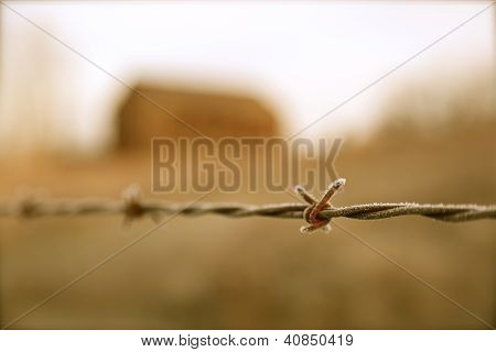 Barbed Wire Fence With Barn