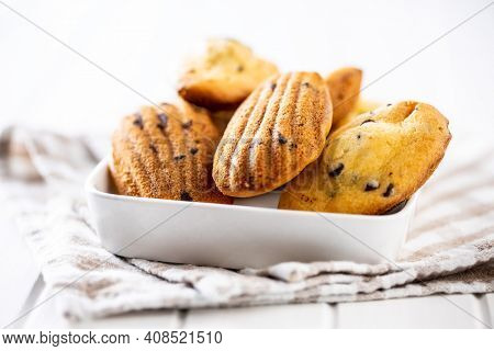 Madeleine with chocolate. Traditional French small cakes on plate.