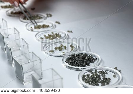 The Process Of Manual Sorting Of Diamonds. Gemstones Are Sorted By Quality And Weight And Arranged I