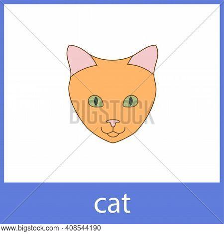 Cat. Pets, Domestic Animals. English Vocabulary Word Card.