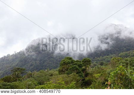 Cloudy Mountain Landscape With Green Forest. Focus On Cloud. Rainy Day Skyscape Over Green Forest. T