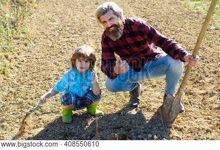 Family Planting A Tree Like. Father Helping Son. Dad And Kid Gardening In Garden Ground