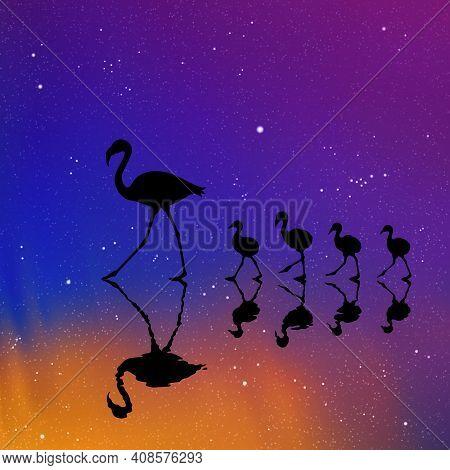 Flamingo Family On Lake At Night. Birds Silhouettes. Aurora Borealis