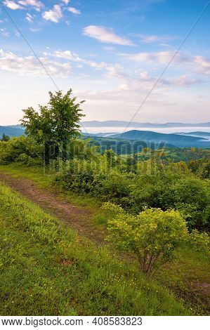 Mountainous Countryside Scenery At Dawn. Distant Valley Full Of Fog In Summer. Plants And Trees On T