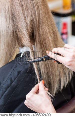 Close-up Of The Hands Of A Professional Hair Stylist With Scissors. Repairing Long Hair Of A Blonde