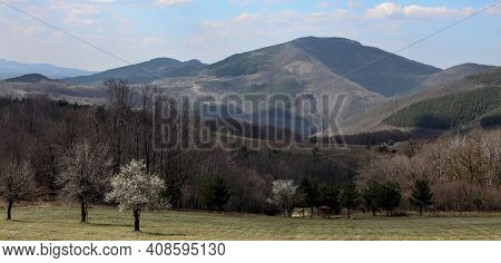 Mountain And Forest Landscape In The Evening Sun In The Balkans. Nature In Early Spring In The Bulga
